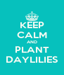 KEEP CALM AND PLANT DAYLILIES - Personalised Poster A4 size