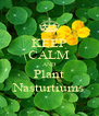 KEEP CALM AND Plant Nasturtiums - Personalised Poster A4 size