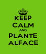 KEEP CALM AND PLANTE ALFACE - Personalised Poster A4 size