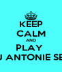 KEEP CALM AND PLAY  DJ ANTONIE SET  - Personalised Poster A4 size