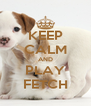 KEEP CALM AND PLAY FETCH - Personalised Poster A4 size