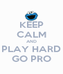 KEEP CALM AND PLAY HARD GO PRO - Personalised Poster A4 size