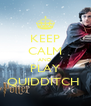 KEEP CALM AND PLAY QUIDDITCH  - Personalised Poster A4 size