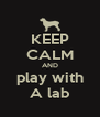 KEEP CALM AND play with A lab - Personalised Poster A4 size