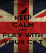 KEEP CALM AND PLAY WITH YOUR CAT - Personalised Poster A4 size