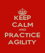 KEEP CALM AND PRACTICE AGILITY - Personalised Poster A4 size