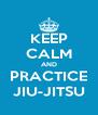 KEEP CALM AND PRACTICE JIU-JITSU - Personalised Poster A4 size
