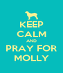 KEEP CALM AND PRAY FOR MOLLY - Personalised Poster A4 size