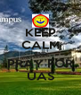 KEEP CALM AND PRAY FOR UAS - Personalised Poster A4 size