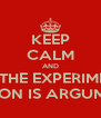 KEEP CALM AND PRAY THE EXPERIMENTAL SECTION IS ARGUMENTS - Personalised Poster A4 size
