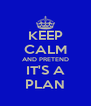 KEEP CALM AND PRETEND IT'S A PLAN - Personalised Poster A4 size