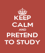 KEEP CALM AND PRETEND TO STUDY - Personalised Poster A4 size