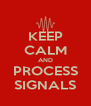 KEEP CALM AND PROCESS SIGNALS - Personalised Poster A4 size