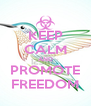 KEEP CALM AND PROMOTE FREEDOM - Personalised Poster A4 size