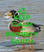 KEEP CALM AND PROTECT  EARTH - Personalised Poster A4 size