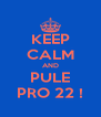 KEEP CALM AND PULE PRO 22 ! - Personalised Poster A4 size