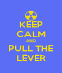KEEP CALM AND PULL THE LEVER - Personalised Poster A4 size
