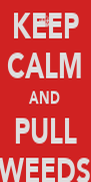 KEEP CALM AND PULL WEEDS - Personalised Poster A4 size