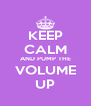 KEEP CALM AND PUMP THE VOLUME UP - Personalised Poster A4 size