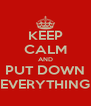 KEEP CALM AND PUT DOWN EVERYTHING - Personalised Poster A4 size