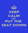 KEEP CALM AND PUT THE  SEAT DOWN - Personalised Poster A4 size