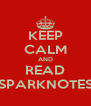 KEEP CALM AND READ SPARKNOTES - Personalised Poster A4 size