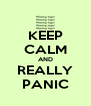 KEEP CALM AND REALLY PANIC - Personalised Poster A4 size