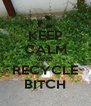 KEEP CALM AND RECYCLE BITCH - Personalised Poster A4 size