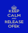 KEEP CALM AND RELEASE OFEK - Personalised Poster A4 size