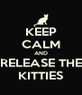 KEEP CALM AND RELEASE THE KITTIES - Personalised Poster A4 size