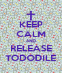 KEEP CALM AND RELEASE TODODILE - Personalised Poster A4 size