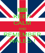 KEEP CALM AND REMEMBER WALES ! - Personalised Poster A4 size