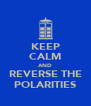 KEEP CALM AND REVERSE THE POLARITIES - Personalised Poster A4 size