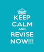 KEEP CALM AND REVISE NOW!!! - Personalised Poster A4 size