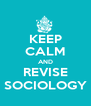 KEEP CALM AND REVISE SOCIOLOGY - Personalised Poster A4 size