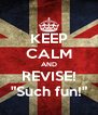 """KEEP CALM AND REVISE! """"Such fun!"""" - Personalised Poster A4 size"""