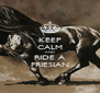 KEEP CALM AND RIDE A FRIESIAN - Personalised Poster A4 size
