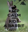 KEEP CALM AND RIDE A RABBIT - Personalised Poster A4 size