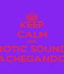 KEEP CALM AND ROBOTIC SOUNDS 2 TÁCHEGANDO ! - Personalised Poster A4 size