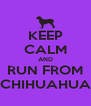 KEEP CALM AND RUN FROM CHIHUAHUA - Personalised Poster A4 size