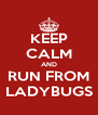 KEEP CALM AND RUN FROM LADYBUGS - Personalised Poster A4 size