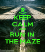 KEEP CALM AND RUN IN THE MAZE - Personalised Poster A4 size