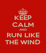 KEEP CALM AND RUN LIKE THE WIND - Personalised Poster A4 size