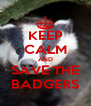 KEEP CALM AND SAVE THE BADGERS - Personalised Poster A4 size