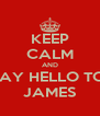 KEEP CALM AND SAY HELLO TO  JAMES - Personalised Poster A4 size