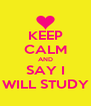 KEEP CALM AND SAY I WILL STUDY - Personalised Poster A4 size