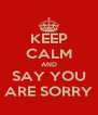 KEEP CALM AND SAY YOU ARE SORRY - Personalised Poster A4 size