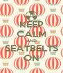 KEEP CALM AND SEATBELTS ON - Personalised Poster A4 size