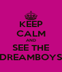 KEEP CALM AND SEE THE DREAMBOYS - Personalised Poster A4 size