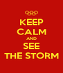 KEEP CALM AND SEE THE STORM - Personalised Poster A4 size